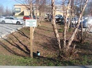 West County Bioretention
