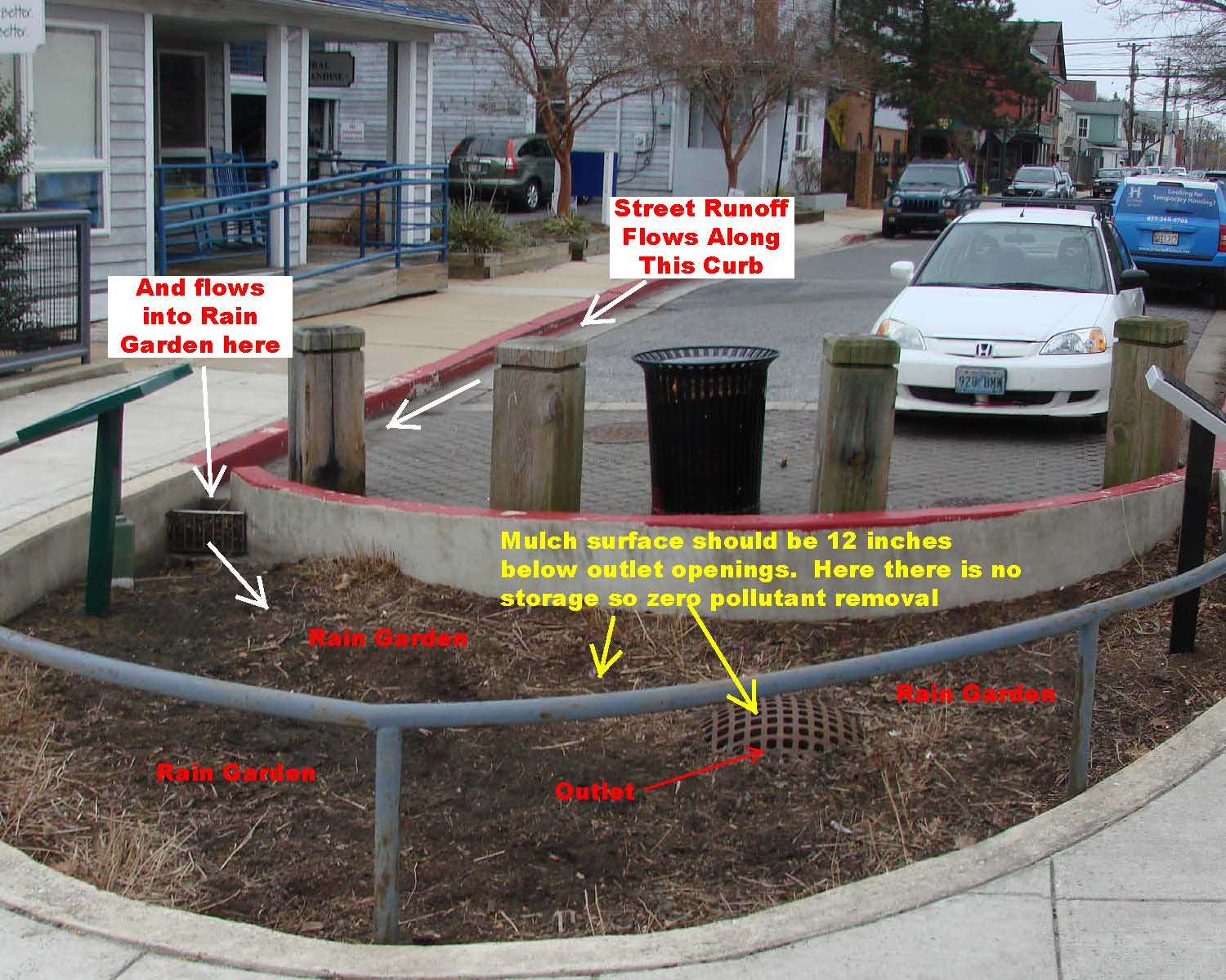 Why Your Help Is So Urgently Needed The 4th Street Rain Garden