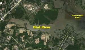 BirdRiverAerial