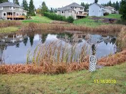 SWM Pond
